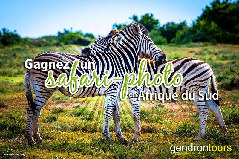 Concours Gagnez un safari-photo en Afrique du Sud!