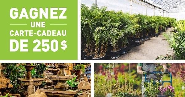 Concours Gagnez une carte-cadeau d'une valeur de 250$ chez Paradis Jardin & Accessoires à Québec!