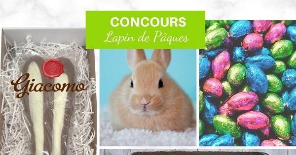 Concours Gagnez un lapin en chocolat offert par Cyntëa - Graphisme!