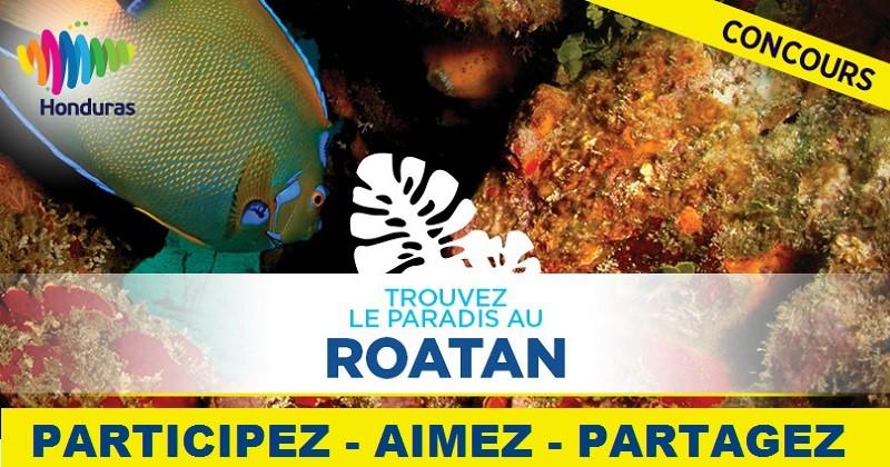 Concours Gagnez un forfait tout inclus pour 2 à l'hôtel Media Luna Resort & Spa sur l'île de Roatán!